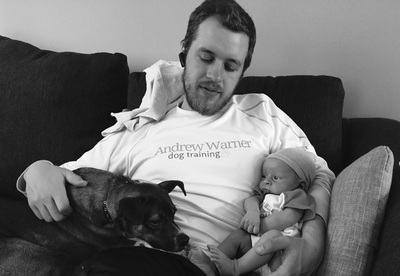Andrew Warner Dog Training